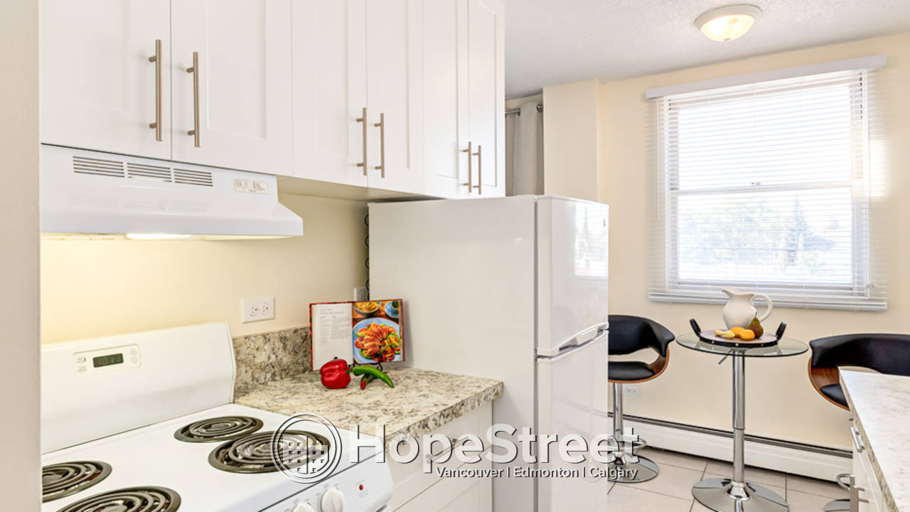 1 Bedroom Apartment for Rent in Mount Pleasant/ Heat & Water Included!