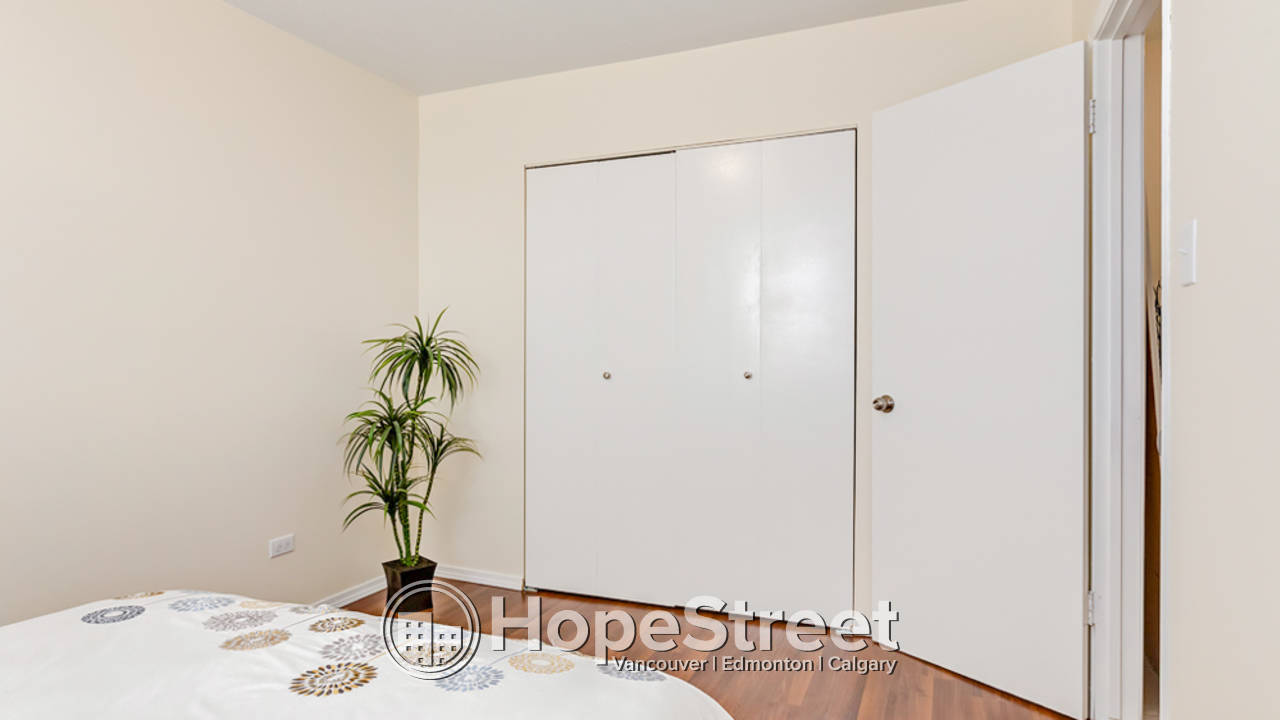 1 Bedroom Apartment for Rent in Mount Pleasant