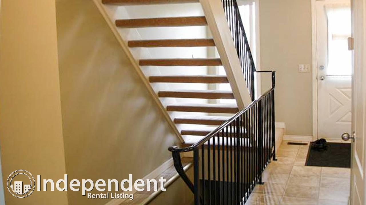 3 Br House for Rent in Castleridge: Pet Friendly