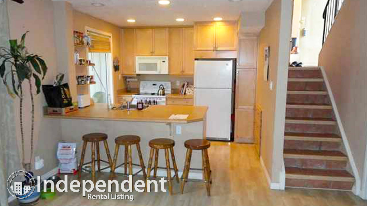 3 Bedroom Townhouse for Rent in Dalhousie: Pet Negotiable