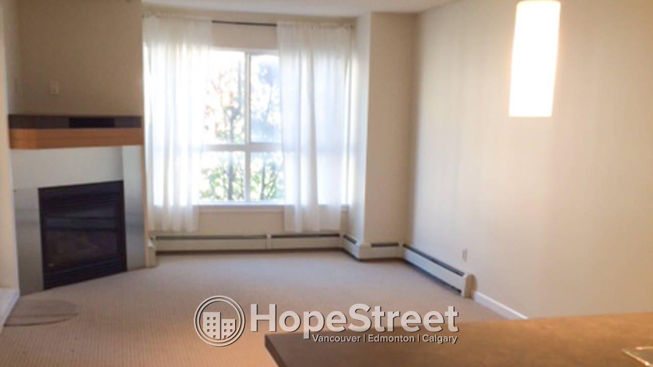 1 Bedroom Apartment for Rent in Lincoln Park: Cat Friendly