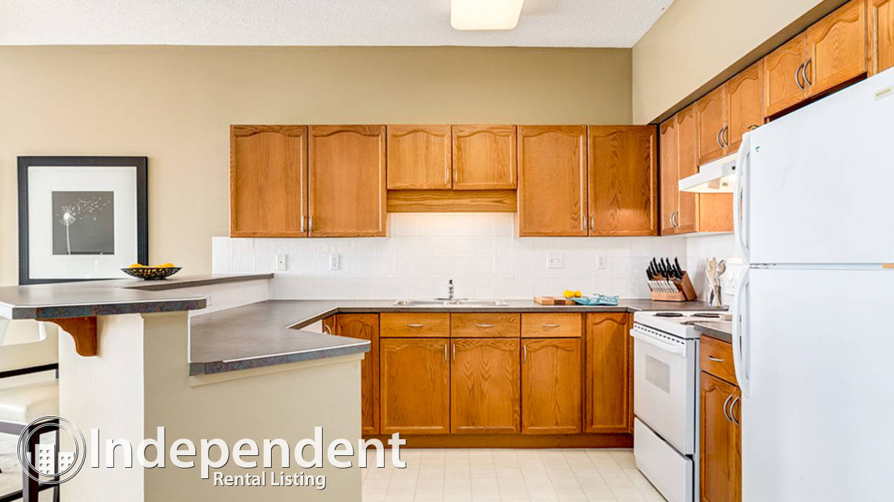 Williamsburg apartments for rent find apartments in html for Apartment landlord plans lincoln park expansion