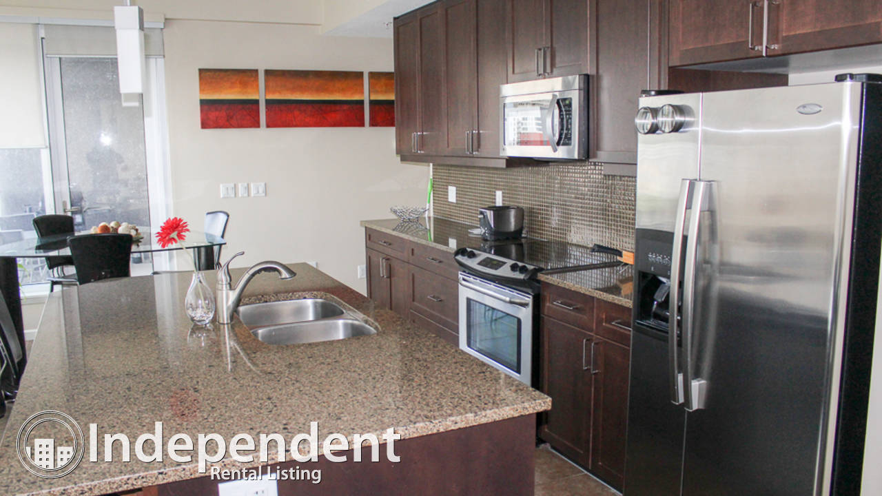Furnished 2 Bedroom Condo for Rent in Downtown: Pet Friendly
