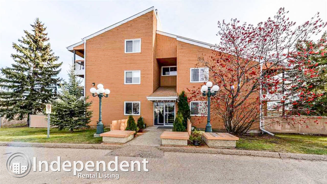 1 Bedroom Condo for Rent in Sifton Park