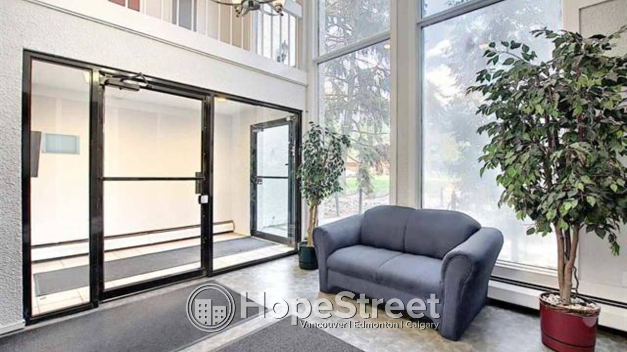 Bright, Clean 2 bedroom Condo with easy access to the University: Pet Friendly!