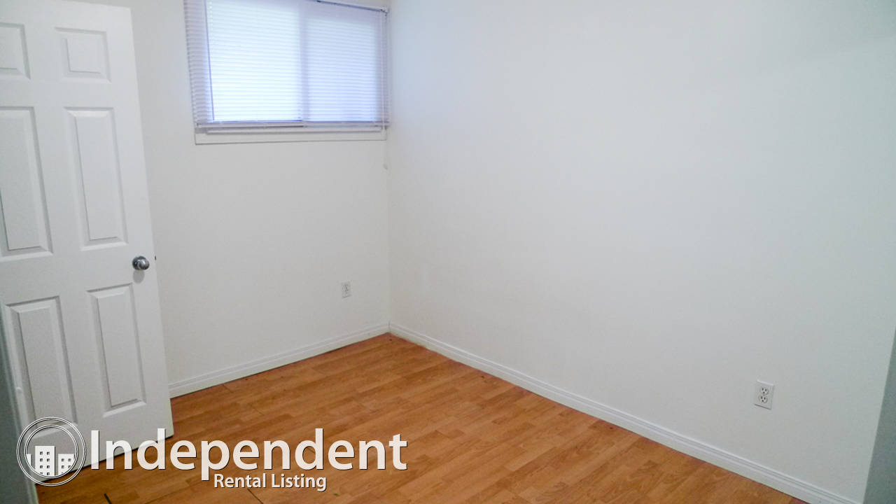 3 Bedroom Basement Suite in Bridgeland: Cat Friendly
