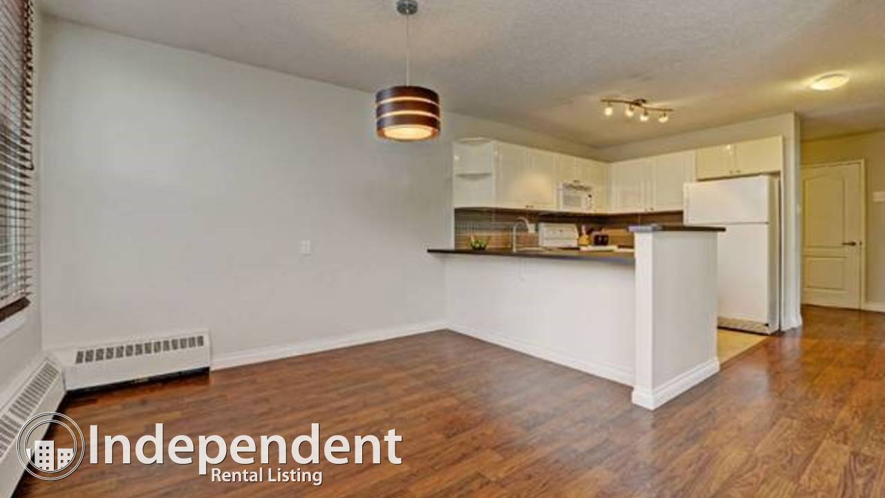 Sunny Top Floor Condo on Beautiful 13 Avenue SW
