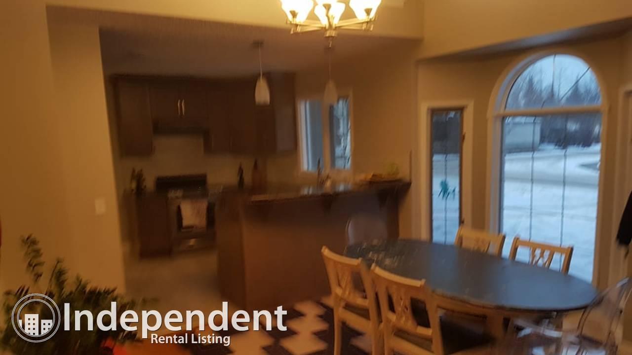 Beautiful clean newly renovated home in wonderful Wildwood