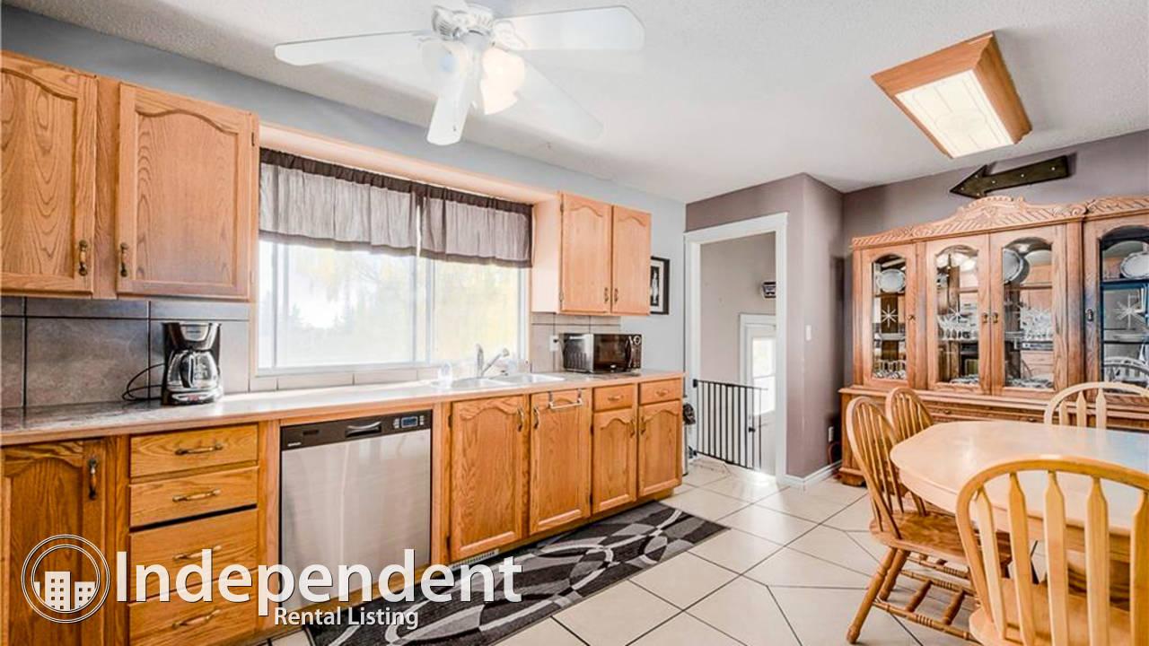 4 Bedroom House for Rent in Whitehorn