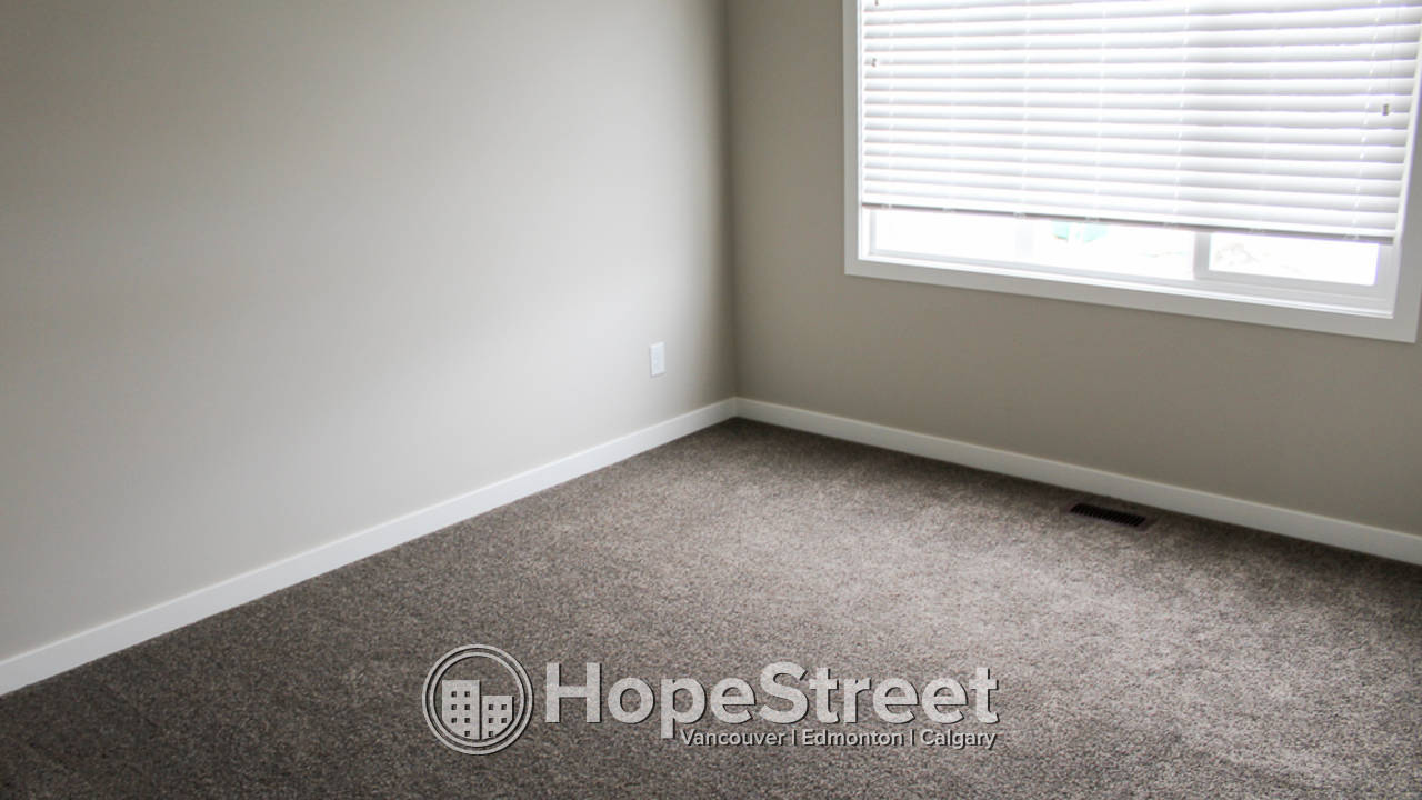 Brand New 2 Bd Townhouse for Rent in Copperfield: Dog Friendly