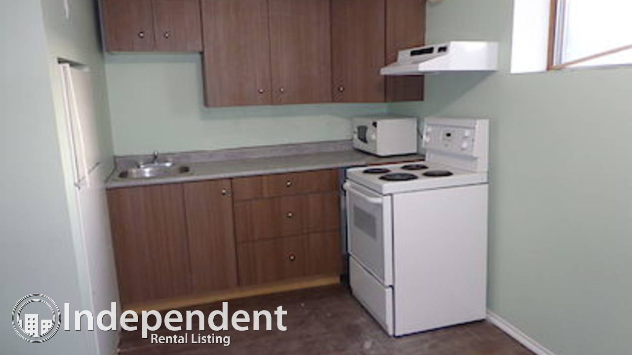NEWLY RENOVATED LOWER FLOOR FOR RENT ($800)