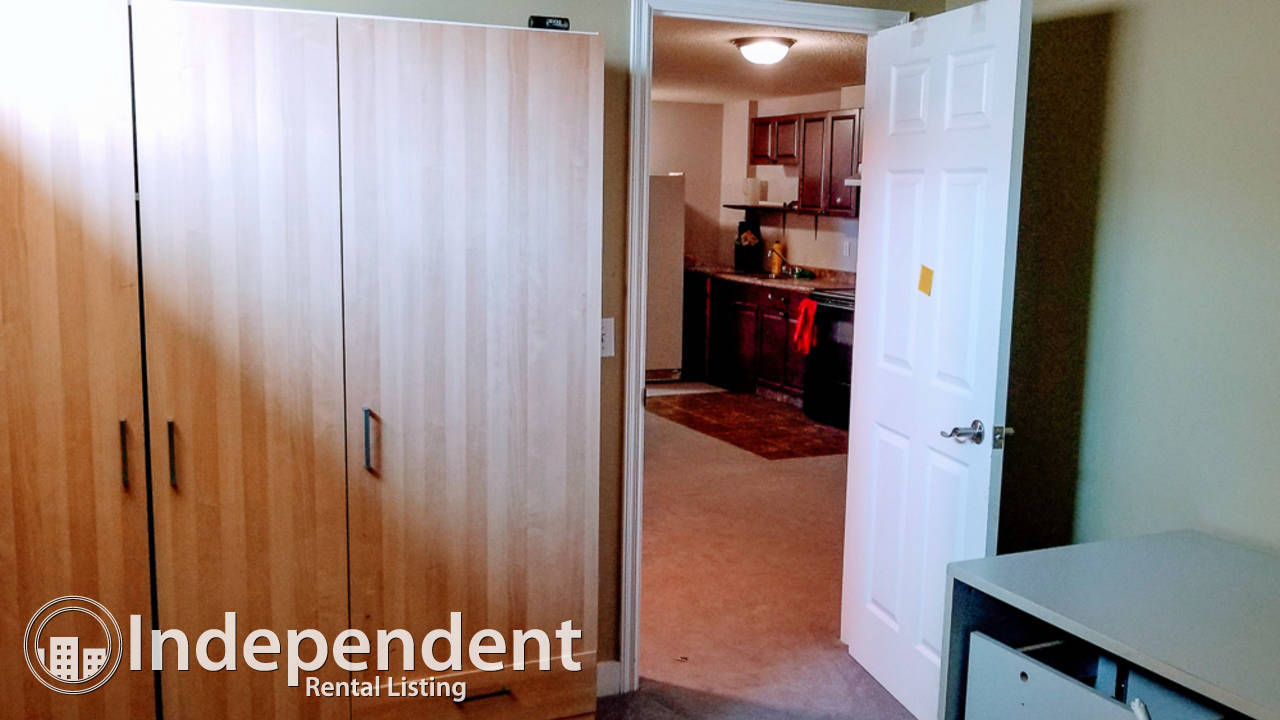 2 Bedroom Basement Suite for Rent in Taradale: Utilities Included