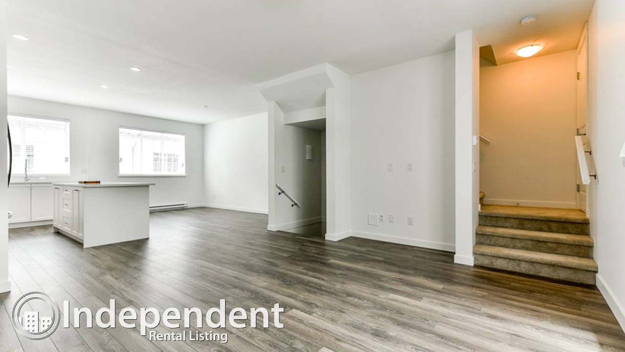 Brand New 4 Bedroom Townhouse for Rent in South Surrey