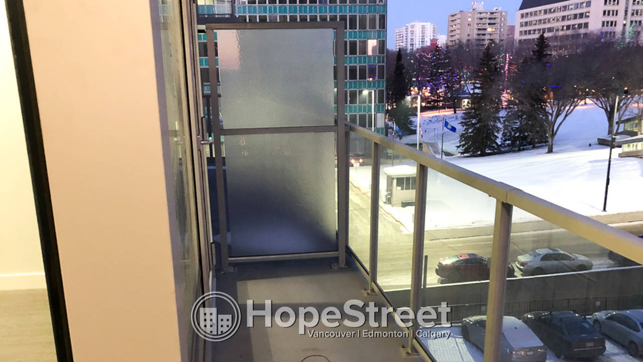 Brand New 1 Bedroom Condo for Rent in Downtown