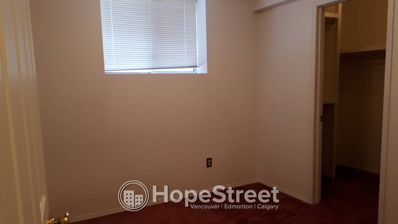 3 Bedroom Newly Renovated Basement for Rent in Allendale