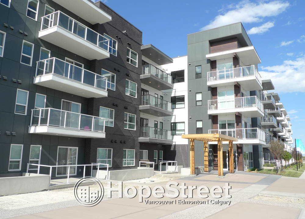 302 - 4350 Seton Drive SE, Calgary, AB - 1,600 CAD/ month