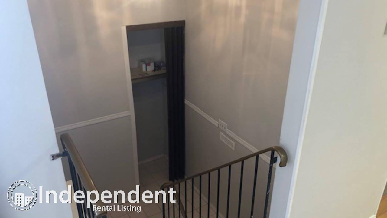 3 Bedroom Condo for Rent in Callingwood: Pet Friendly