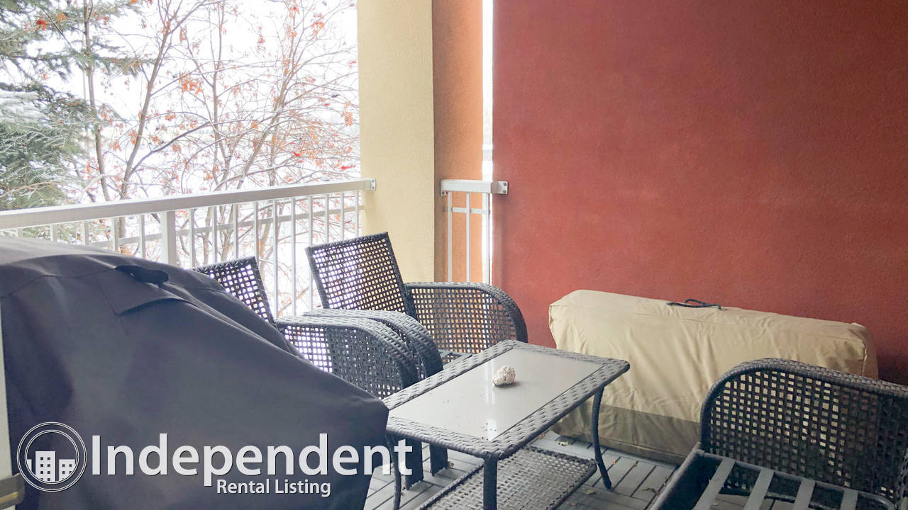 1 Bd Condo for Rent in Lincoln Park: Heat & Water Included: JUNE RENT FREE
