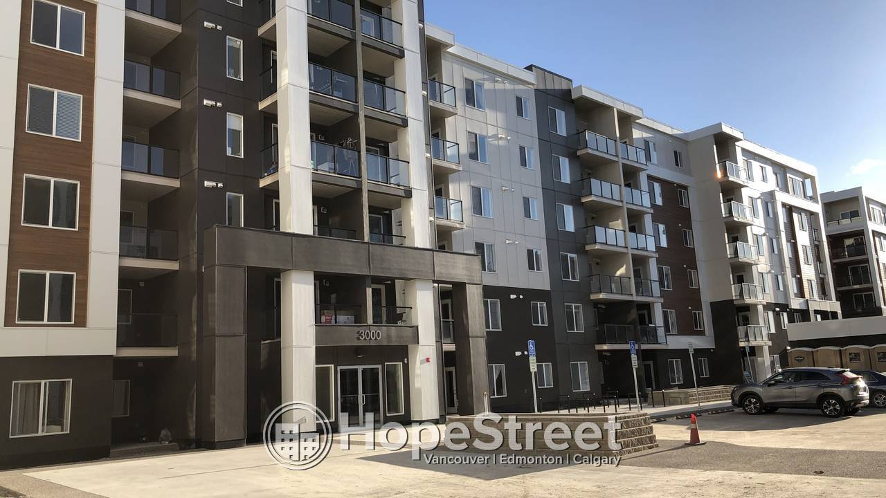 2 Bedroom BRAND NEW Condo For Rent in Skyview