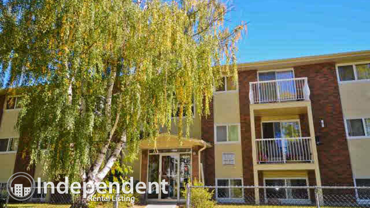 3 Bedroom Condo for Rent in Queen Mary Park: FIRST MONTH FREE RENT