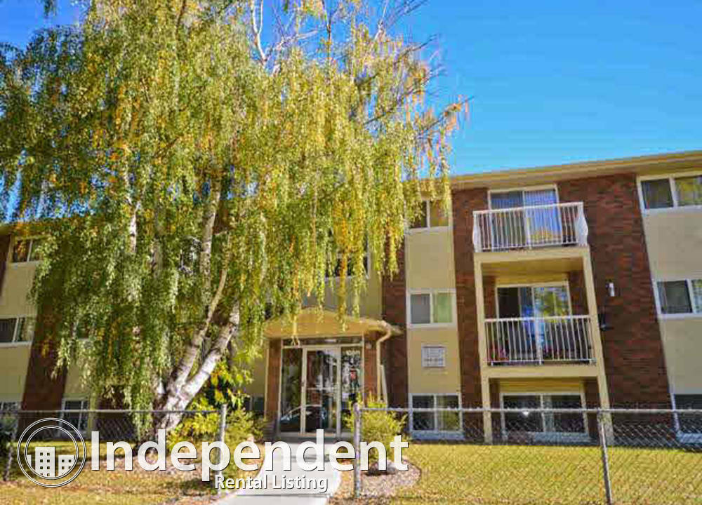 206 - 10811 115  Street NW, Edmonton, AB - $1,100