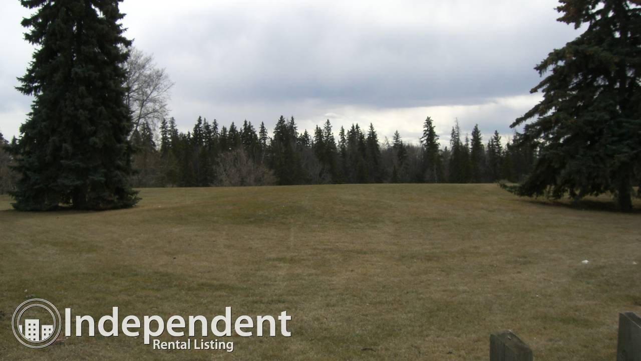 Greenspace in front and back: Charming House in Cromdale!