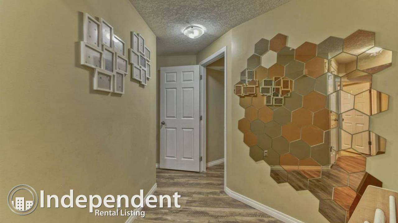 1 BR Walkout Suite for Rent in Evergreen! Utilities Included