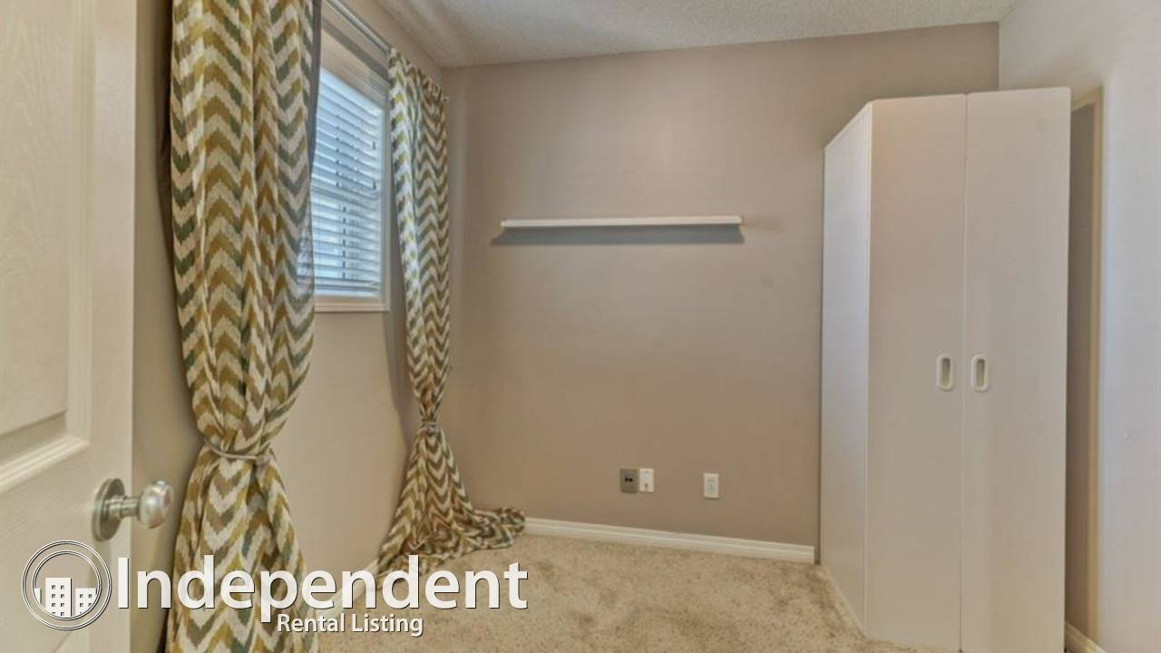 3+1 BR BEAUTIFUL & SPACIOUS House for Rent in Evergeen